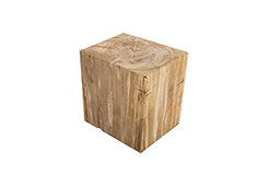 Petrified Wood Stool / Square