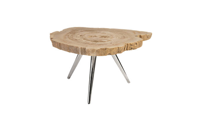 Petrified Wood Coffee Table Stainless Steel Legs Id83103