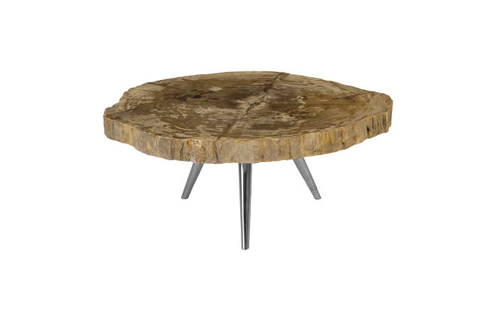 Petrified Wood Coffee Table Id85083