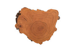 Burled Root Wall Art / Faux Bois, SM