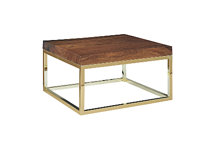 Chamcha Wood Coffee Table Natural, Square, Plated Brass Base