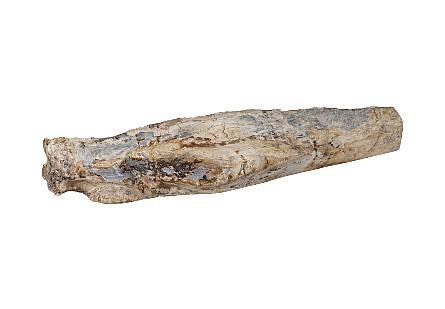 Petrified Wood Sculpture