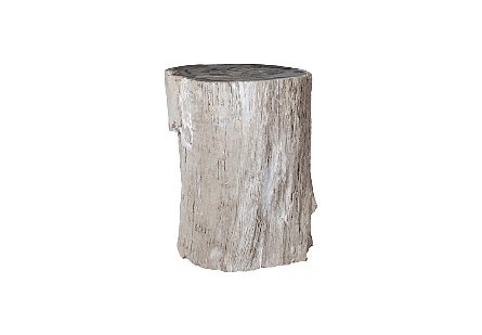 Petrified Wood Pedestal