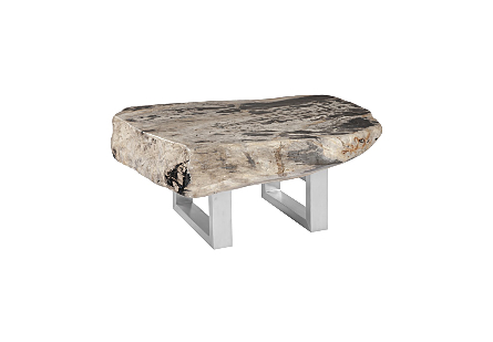 Petrified Wood Coffee Table Stainless Steel Base