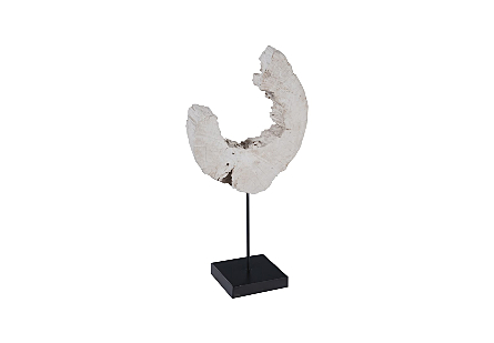 Eroded Wood C Sculpture on Stand ,Assorted