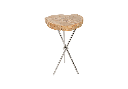 Petrified Wood Side Table 3 Legged