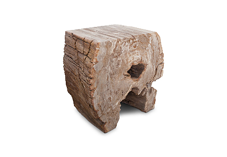 Petrified Wood LG Stool, Rough Sides, Flat Top