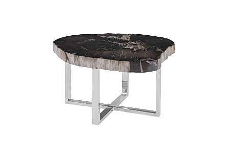 Petrified Wood Coffee Table SS Base, Assorted