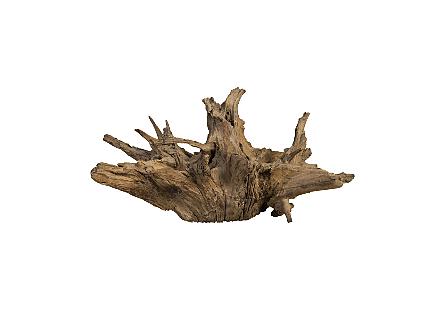 Teak Root Sculpture Natural, Assorted