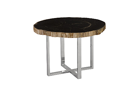 Petrified Wood Coffee Table Stainless Steel Leg