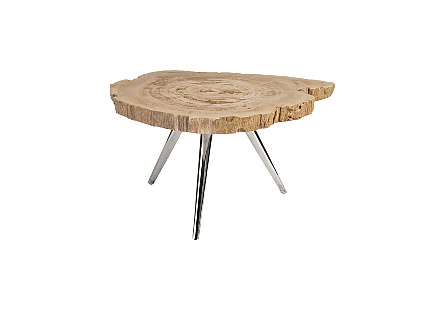 Petrified Wood Coffee Table Stainless Steel Legs, Assorted