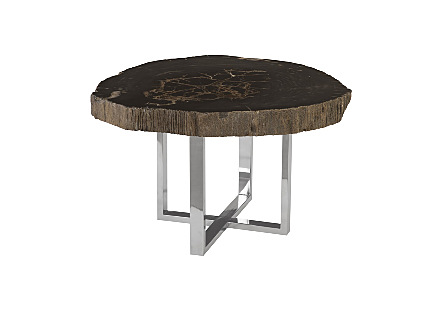 Petrified Wood Coffee Table w/SS Base