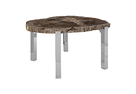 Petrified Wood Dining Table Stainless Steel Legs