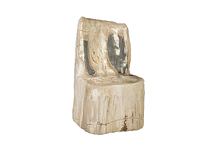 Petrified Wood Chair