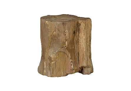 Petrified Wood Stool Assorted