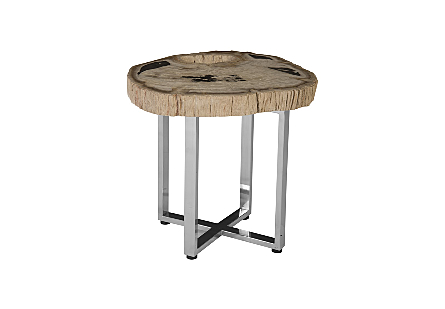 Petrified Wood Coffee Table SS Legs