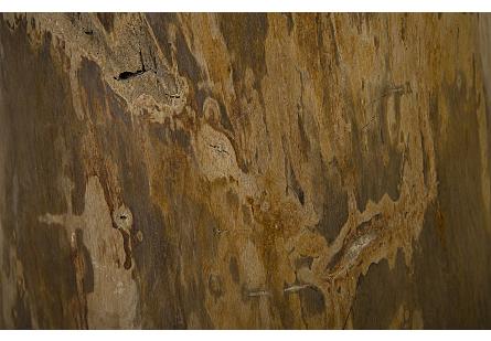 Petrified Wood Stool Assorted