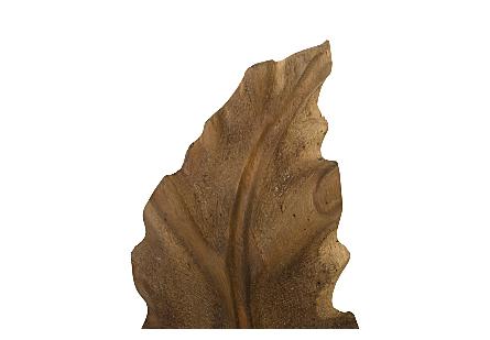 Petiole Wall Leaf Wood, SM