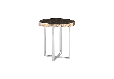 Petrified Wood Side Table Stainless Steel Base