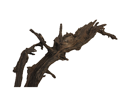 Black Wood Sculpture