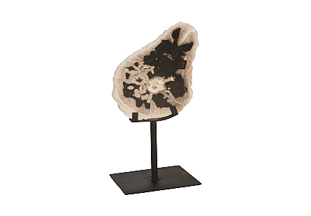 Petrified Wood Sculpture Metal Base