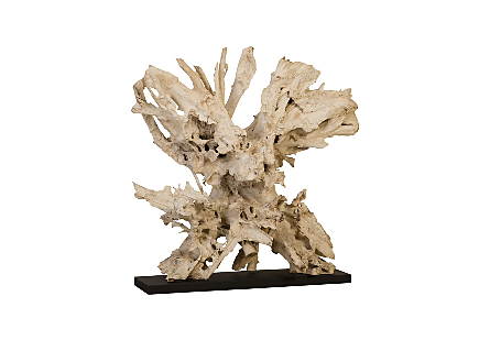 Teak Root Sculpture on Base