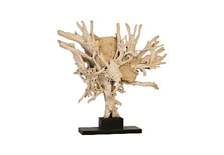 Teak Root Sculpture Stone Detail