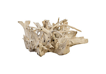 Teak Root Coffee Table Bleached