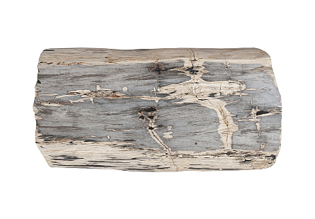 Petrified Wood Coffee Table Brushed Stainless Steel Legs