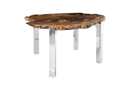 Petrified Wood Coffee Table Stainless Steel Legs, Glossy