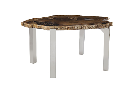 Petrified Wood Dining Table High Gloss, Stainless Steel Legs