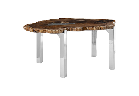 Petrified Wood Dining Table Stainless Steel Legs, Glossy