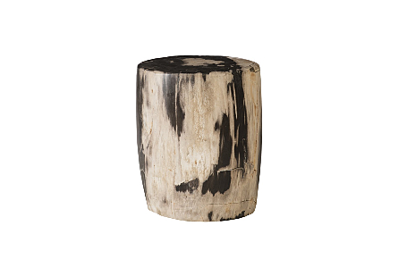 "Petrified Wood Stool, Polished,  Mixed 8""-10"" x 17""-19""h Assorted"