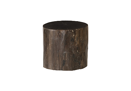"Petrified Wood Stool, Polished, Black , 12""-14"" x 17""-19""h Assorted"
