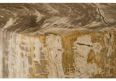 """Petrified Wood Stool, Polished Cream , 15""""-18"""" x 17""""-19""""h Assorted"""