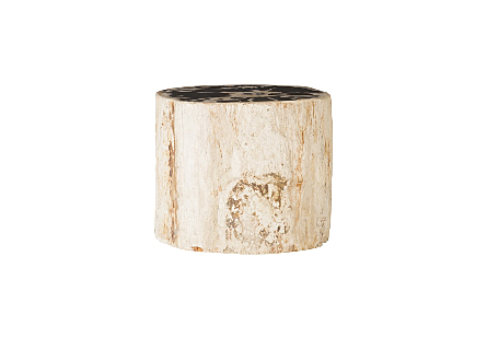 "Petrified Wood Stool, Rough, Mixed , 15""-18"" x 17""-19""h Assorted"