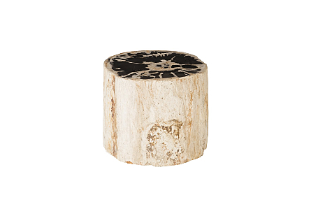Petrified Wood Stool Colossal