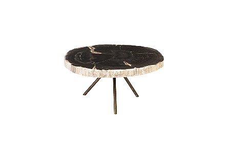 Petrified Wood Coffee Table Assorted