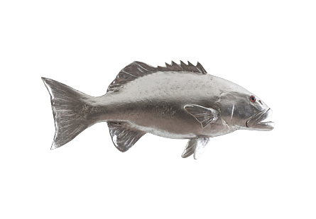front view of the Phillips Collection Coral Trout Silver Wall Sculpture a fish sculpture made of composite in a silver leaf finish
