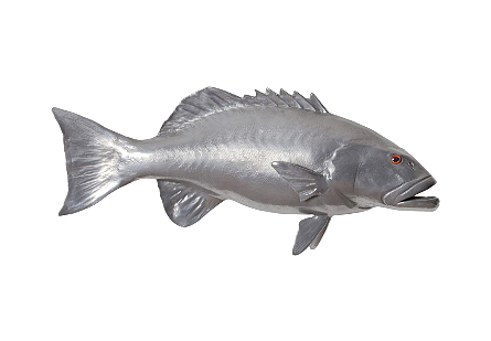 Coral Trout Fish Wall Sculpture Resin, Polished Aluminum Finish