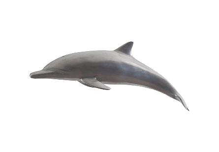 Dolphin Polished Aluminum