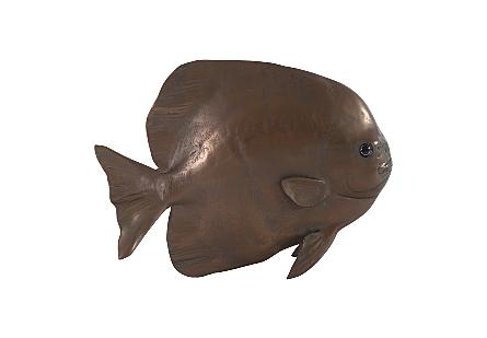 Australian Batfish Bronze