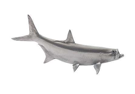 front view of the Phillips Collection Tarpon Gray Wall Sculpture a fish sculpture to hang on the wall made of composite in a polished aluminum finish