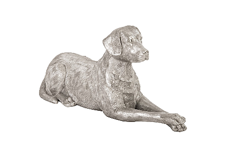 Labrador, Laying Silver Leaf