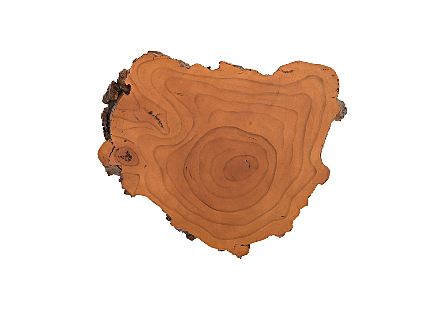 Burled Root Wall Art Small, Faux Bois Finish