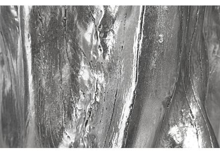 Log Trivet Silver Leaf