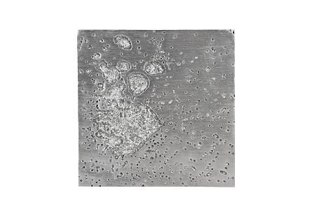 Splotch Wall Art Square, Silver Leaf