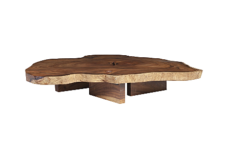 Chamcha Wood Round Coffee Table Freeform