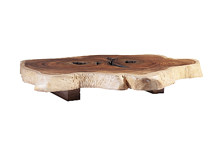 Chamcha Wood Round Coffee Table, Colossal