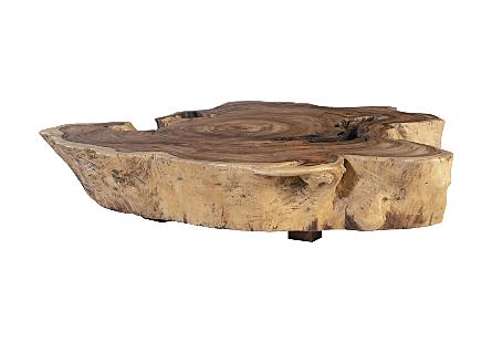 Chamcha Wood Coffee Table Square